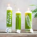 Candles & LEDs